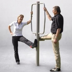 Aparat Fitness Stretchgym